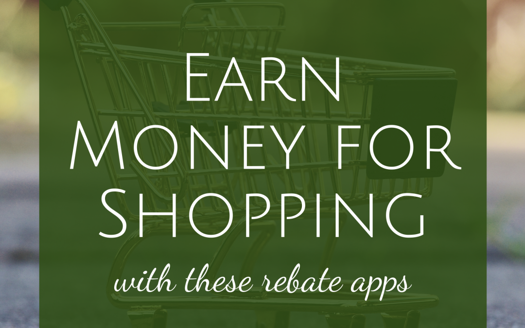 Earn Money for Shopping