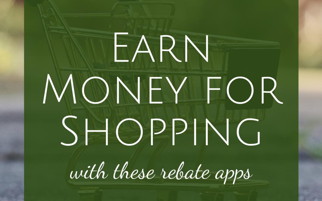 Earn Money for Shopping